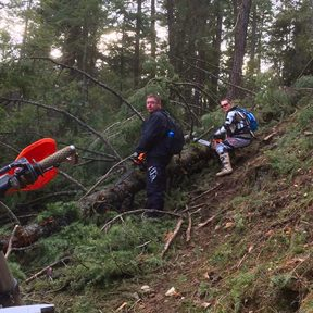 Trail Clearing Canfield